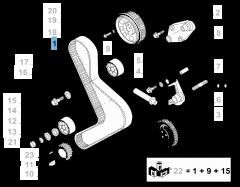 Correa de distribución para Fiat Professional Ducato